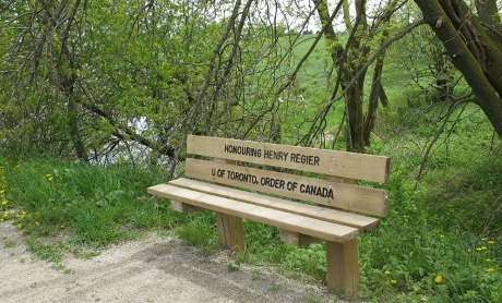 Bench with etching: Honouring Henry Regier, U of Toronto, Order of Canada